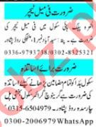 Principal & Teaching Staff Jobs 2020 in Peshawar
