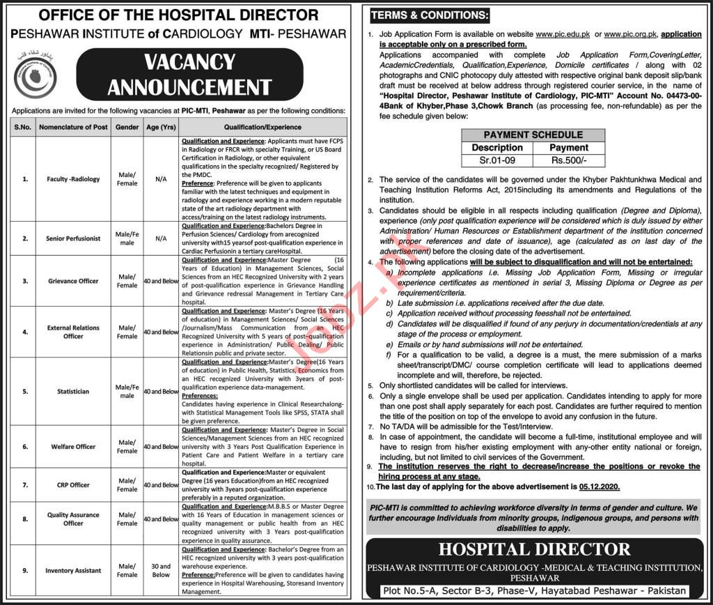 PIC MTI Peshawar Jobs 2020 for Statistician & CRP Officer