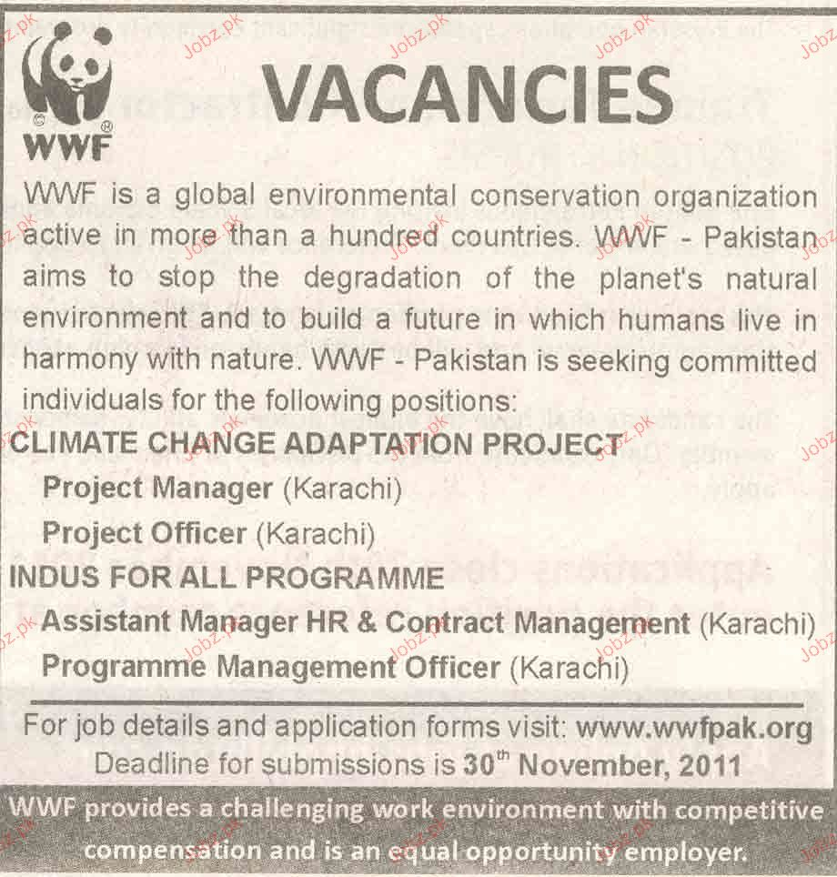 Project Manager and Project Officer Job Opportunity