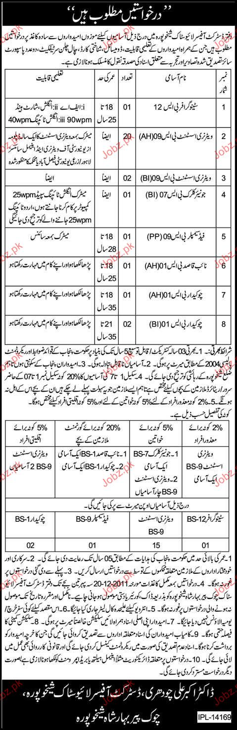Stenographer, Veterinary Assistant, Junior Clerk Required
