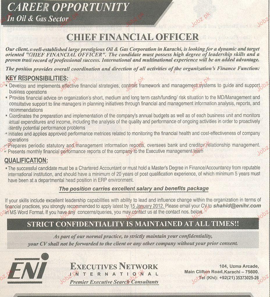 Chief financial officer job opportunity 2019 job advertisement pakistan - Chief financial officer cfo ...