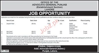 Office Staff Job Opportunity