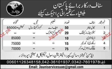 Data Entry Operators, Marketing Staff Job Opportunity