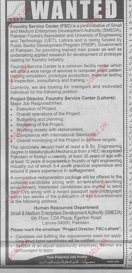 Project Director Job Opportunity