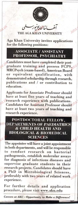 Assistant Professor, Associate Professor Job Opportunity