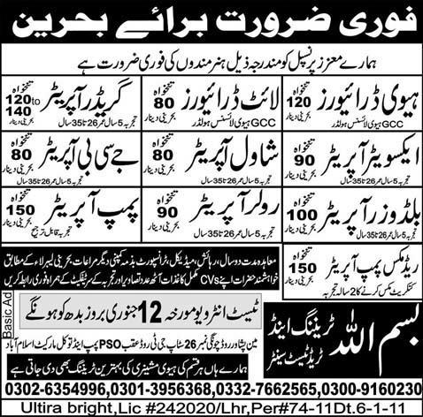 Job In Behreen