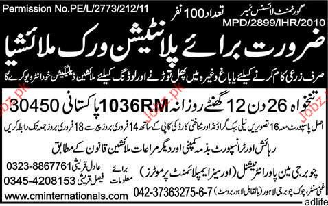 Agriculture  Worker Job Opportunity