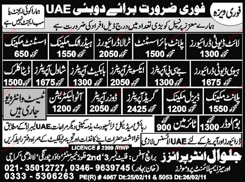 Light Duty Driver, Plant Higher Assistant Job Opportunity