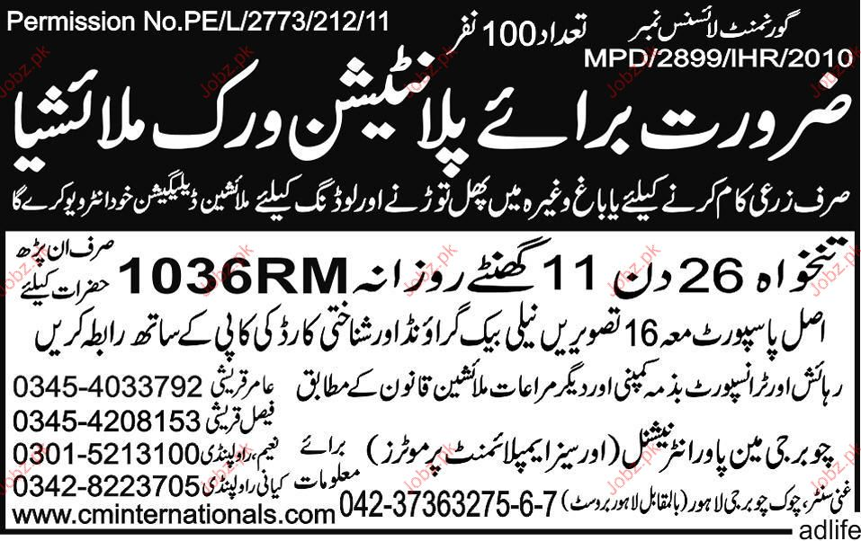 Employee for Plantation Work Required