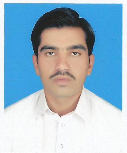 Khurram Riaz Data Processing, Excel, Data Entry, Statistics
