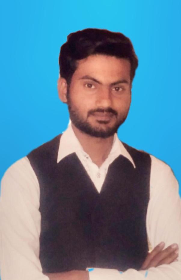 Electrical Power Electrical Engineering Freelancer