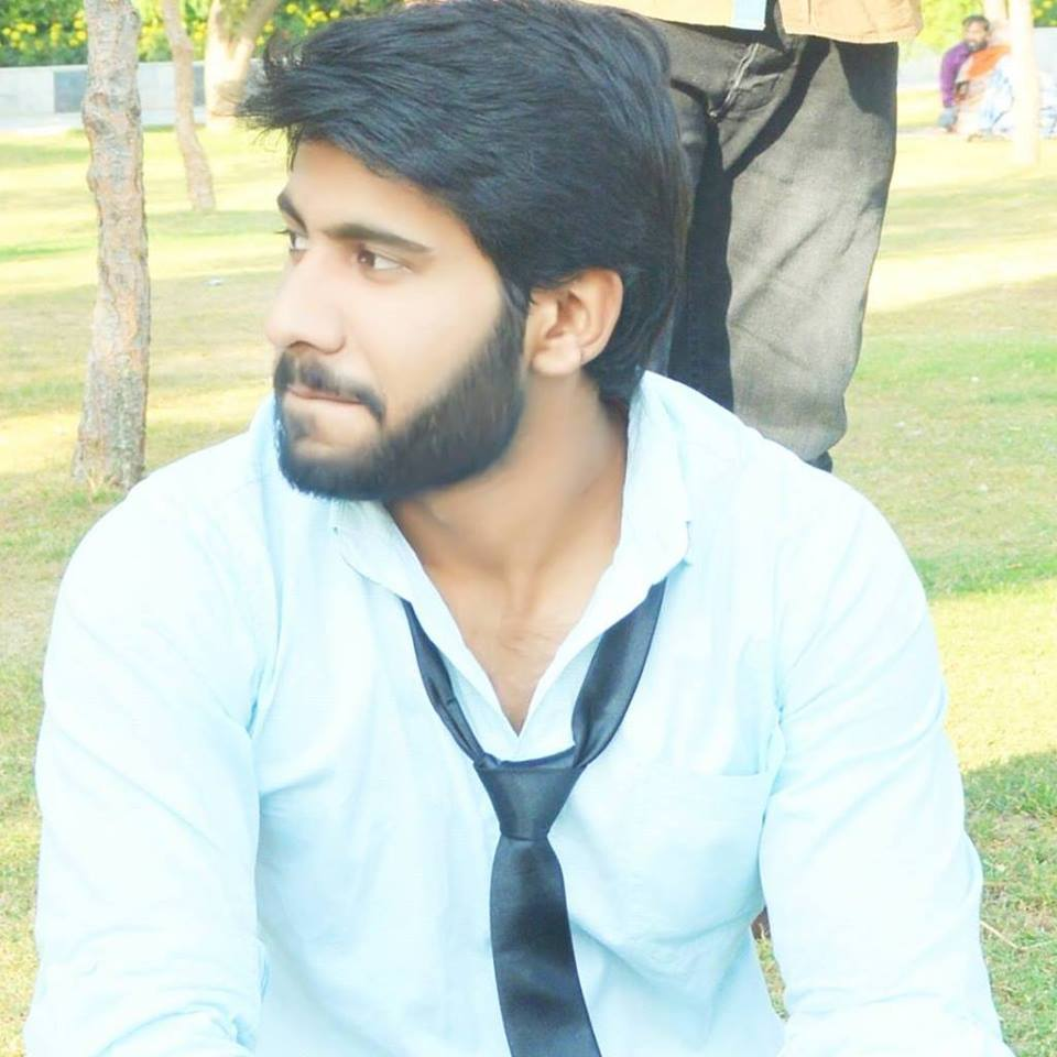 Zain Shahzad Wordpress, .NET, C# Programming, SQL, Software Development