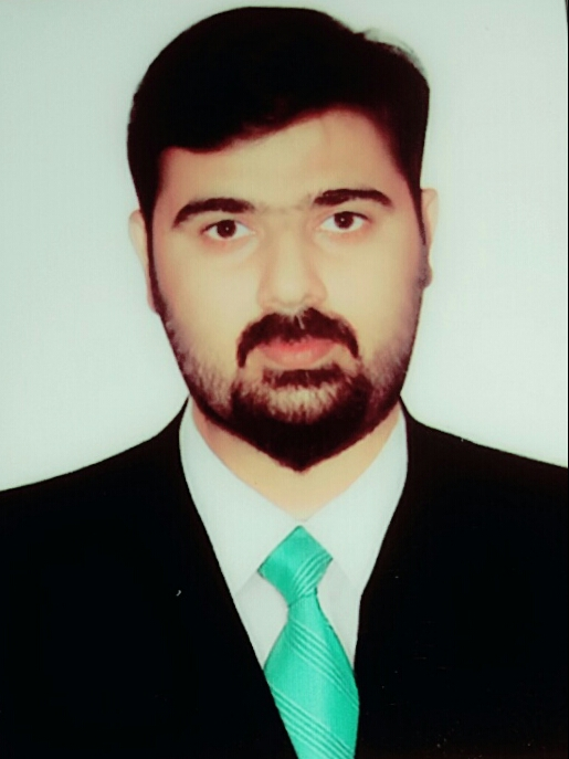 Mian Hamid Mughal Data Entry