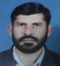 Mir Wali Shah