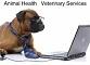 Animal Health Veterinary Services Office