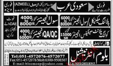 Civil Engineers, Planning Mechanical Engineers Wanted