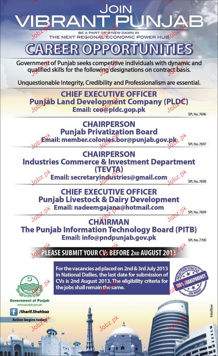 Chief executive Officers,Chairperson Job Opportunity