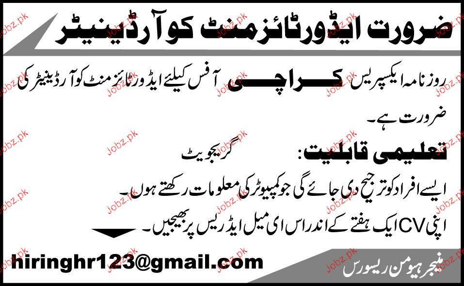 Coordinators Job Opportunity