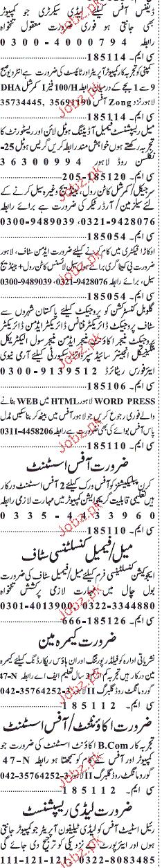 Jang Classified Computer Operators, Salesman Wanted