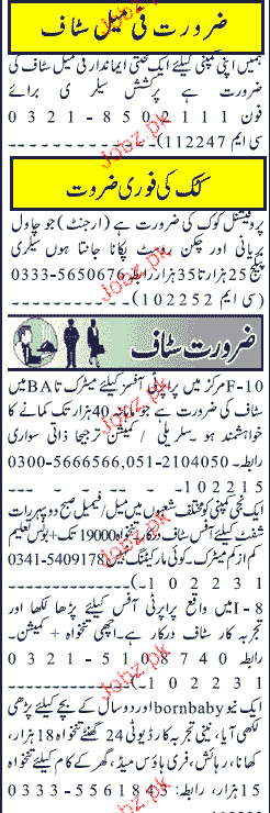Jang Classified Cook and Property Officers Job Opportunity