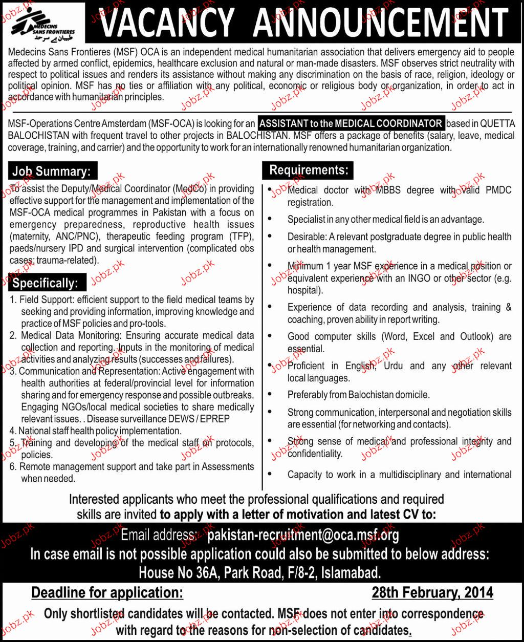 Assistant To the Medical Coordinators Job Opportunity