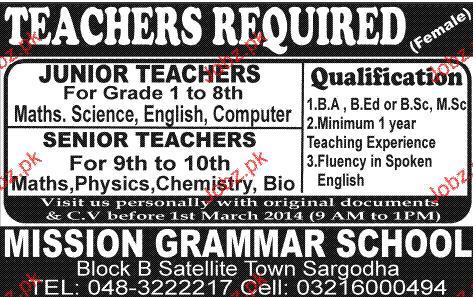 Senior Teachers and Junior Teachers Job Opportunity