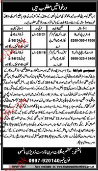 Foresters and Forest Guards Job Opportunity