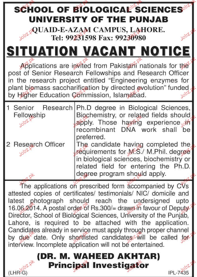 Senior Research Fellowship and Research Officers Job in PU