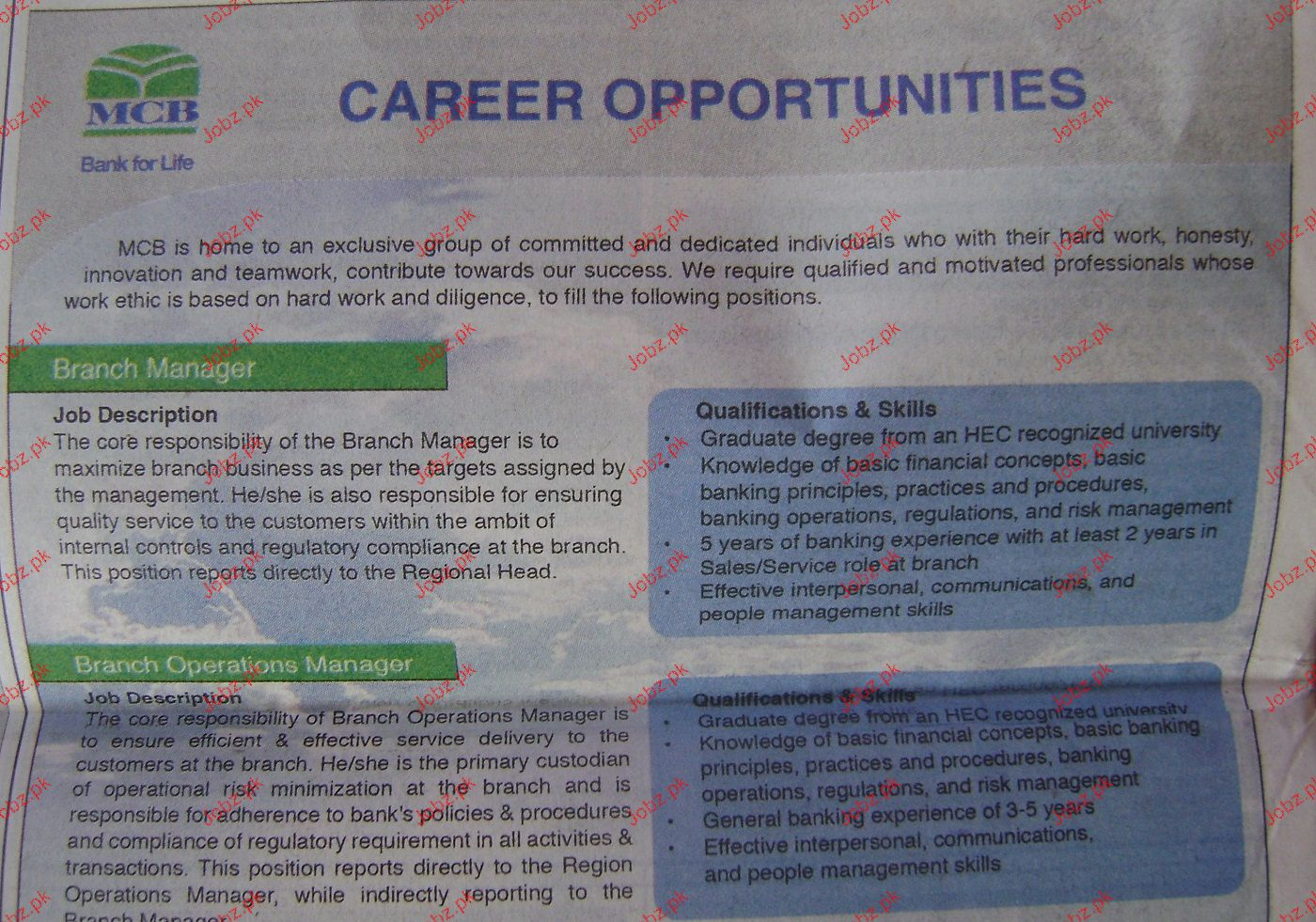 Branch Manager and Branch Operation Manager Wanted