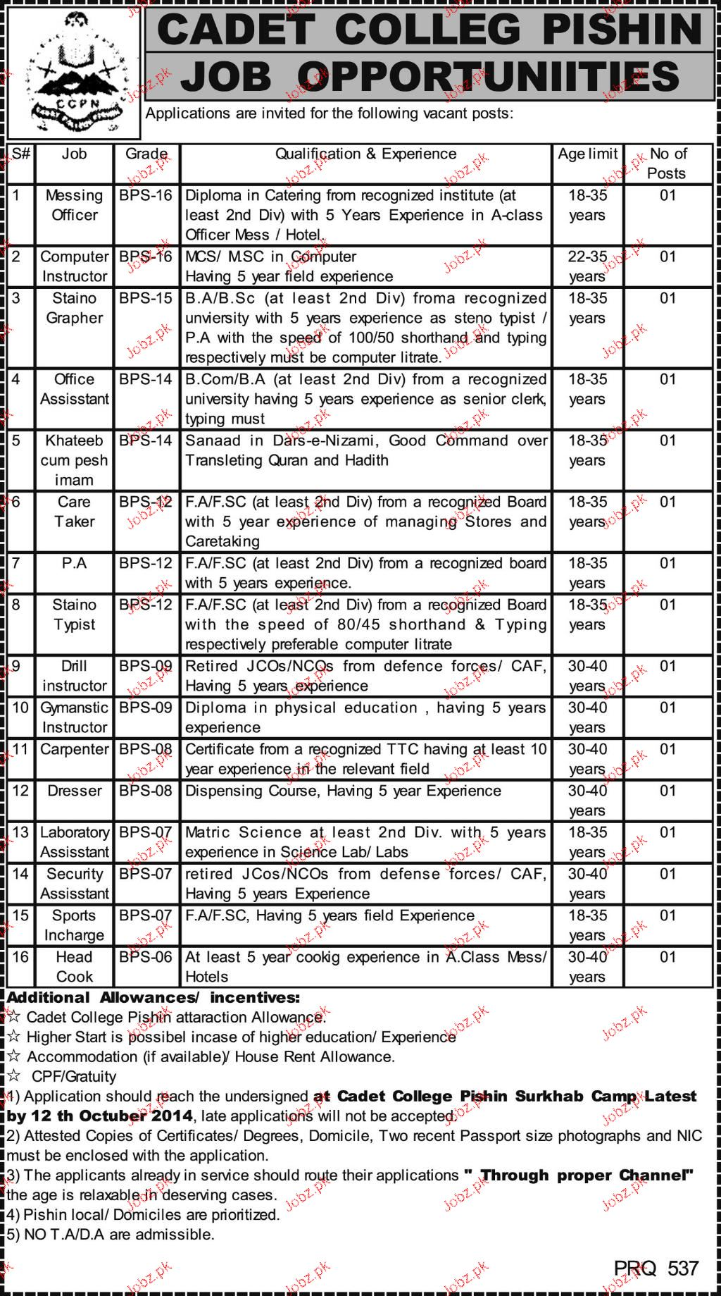 Messing Officers, Computer Instructors Job in Cadet College