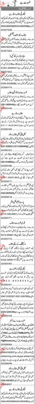 Drivers,  Security Guards Job Opportunity