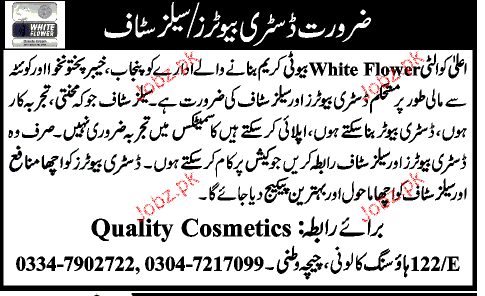 Distributors and Sales Promotion Staff Job Opportunity