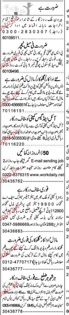 Female Teachers, Data Entry Operators Job Opportunity