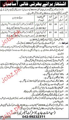 Niab Qasid and Chawkidars Job in District Labor Office