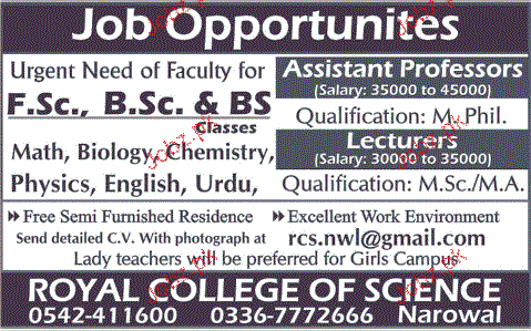 Assistant Professors and Lecturers Job Opportunity