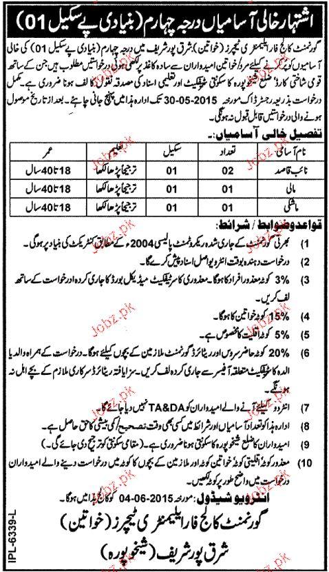 Naib Qasid, Malis and Mashkees Job in Government College
