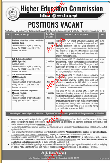 SAP Consultants and Business Manager Job in HEC