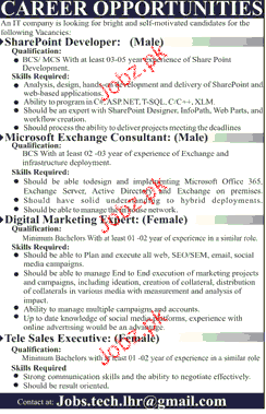 SharePoint Developers, Consultants Job Opportunity