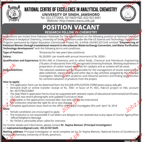 Research Fellow Job in University of Sindh