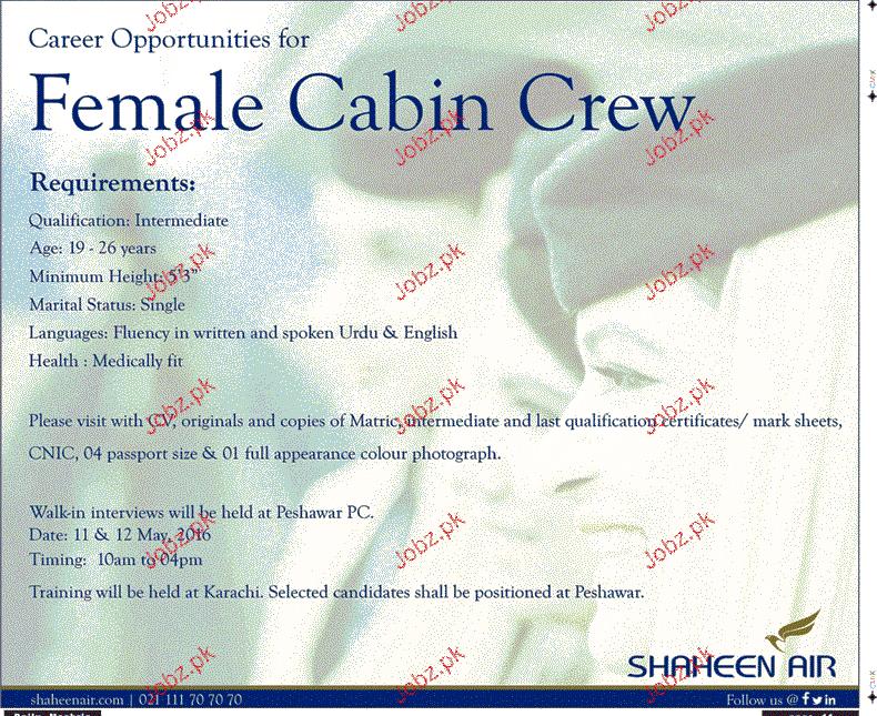 Female Cabin Crew Job in Shaheen Air
