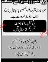 Female Accountant Job in Hamza Foundation
