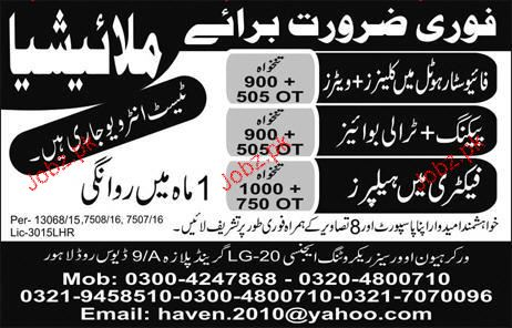 Cleaners, Trolly Boys and Helpers Job Opportunity