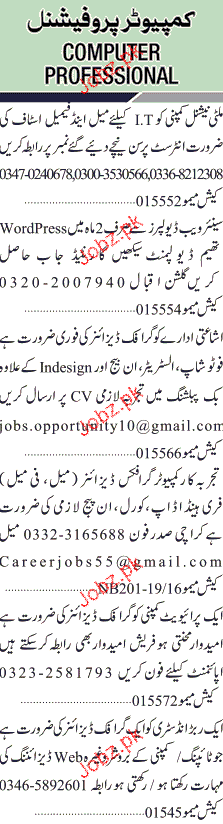 Sunday Jang Classified Computer Professional Job Opportunity