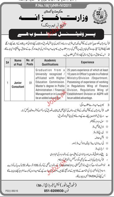 Junior Consultants Job in Foreign Ministry
