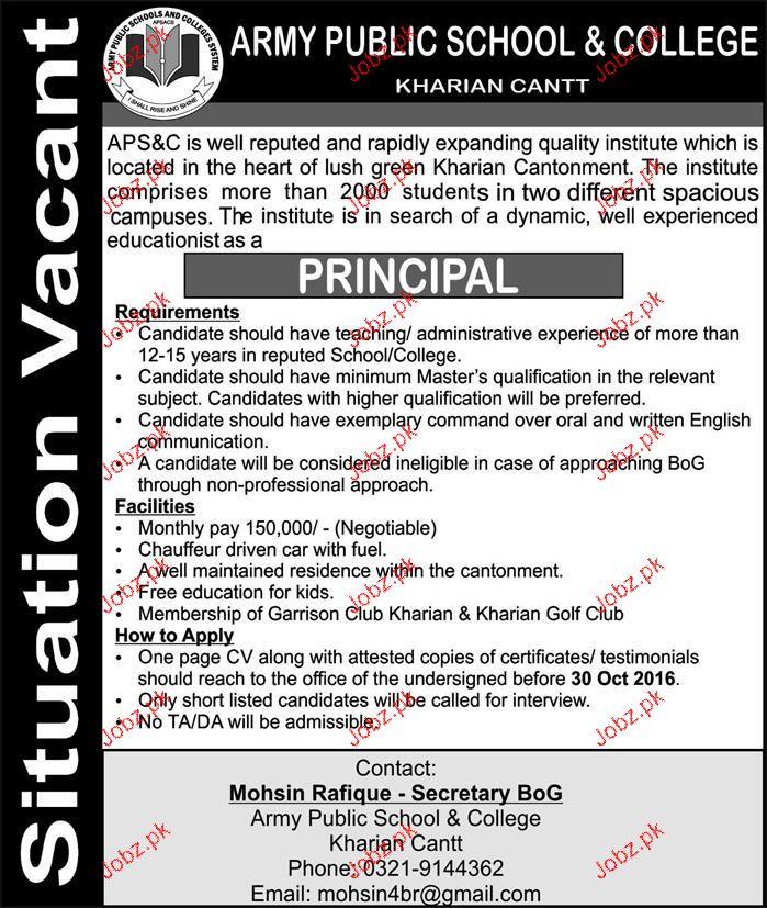 Principal Job in Army Public School & College