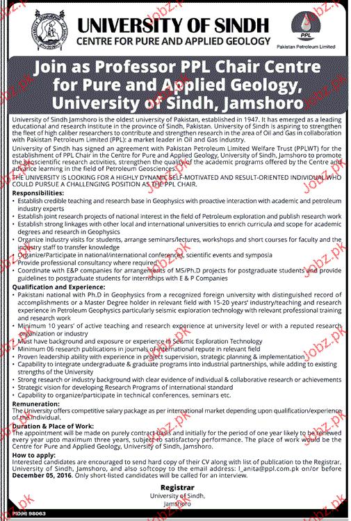 Professors Job in University of Sindh
