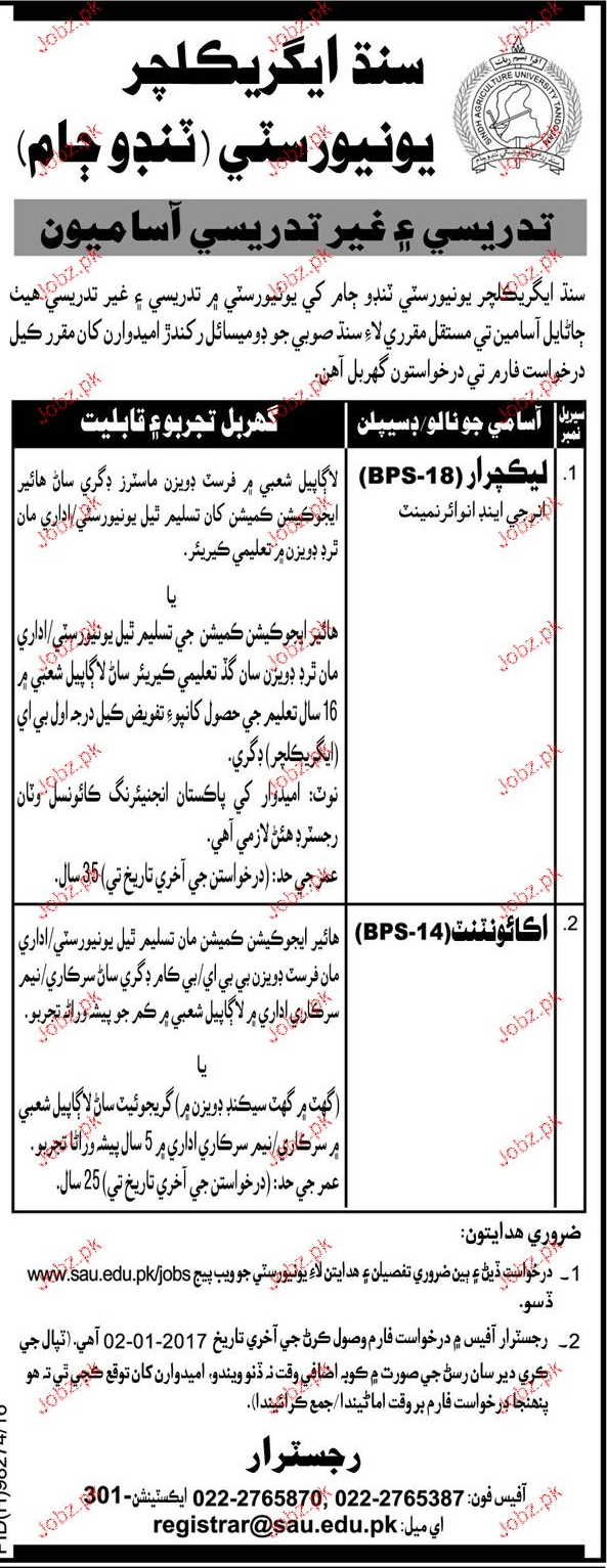 Lecturers and Accountant Job in Sindh Agriculture University