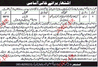 Drivers Job in Excise and Taxation Department
