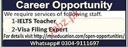 IELTS Teachers and Visa Filling Experts Job Opportunity
