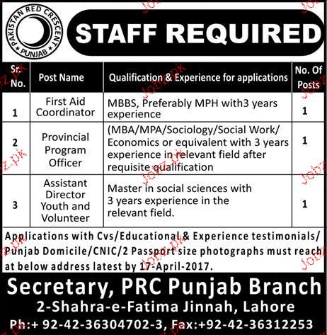 First Aid Coordinators, Assistant Director  Wanted